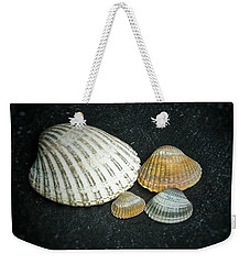 Weekender Tote Bag featuring the photograph Beach Treasures  by Karen Stahlros