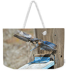 Weekender Tote Bag featuring the photograph Beak To Beak by Mike Dawson