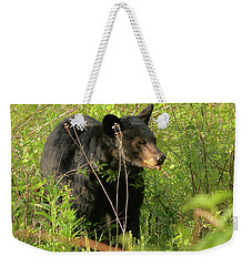 Weekender Tote Bag featuring the photograph Bear In The Grass by Coby Cooper