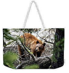 Weekender Tote Bag featuring the photograph Bear In Trees by Scott Read