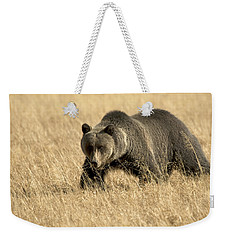 Bear On The Prowl Weekender Tote Bag