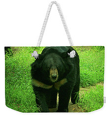 Bear On The Prowl Weekender Tote Bag by Trish Tritz