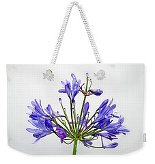 Beautiful Agapanthus Flower - The Blue Trumpets Are Perfectly Lit By Natural Daylight Weekender Tote Bag