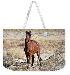 Weekender Tote Bag featuring the photograph Beautiful Bay by Lula Adams