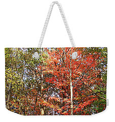 Weekender Tote Bag featuring the photograph Beautiful Fall Colors  by Irina Sztukowski