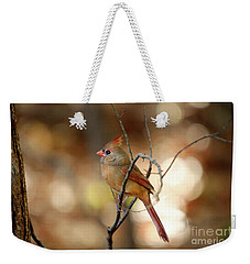 Weekender Tote Bag featuring the photograph Beautiful Female Cardinal by Darren Fisher