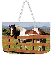 Beautiful Horse In Kinneswood Weekender Tote Bag