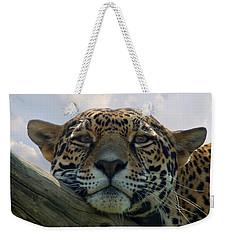 Beautiful Jaguar Weekender Tote Bag by Sandy Keeton