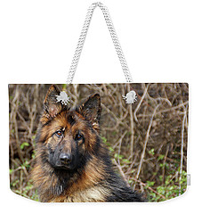Weekender Tote Bag featuring the photograph Beautiful Jessy by Sandy Keeton