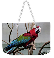 Beautiful Macaw Weekender Tote Bag