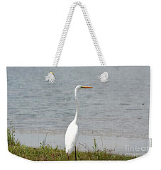 Weekender Tote Bag featuring the photograph Beautiful Male Egret by Maria Urso