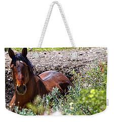 Beautiful Mustang Stallion Weekender Tote Bag