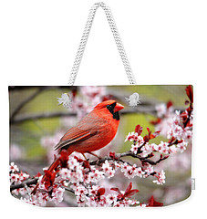 Beautiful Northern Cardinal Weekender Tote Bag by Trina Ansel