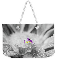 Beautiful Splash Of Purple On A Daisy In The Garden Weekender Tote Bag