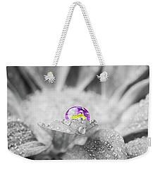 Beautiful Splash Of Purple On A Daisy In The Garden Weekender Tote Bag