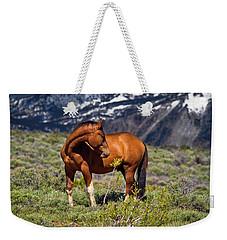 Beautiful Wild Mustang Horse Weekender Tote Bag