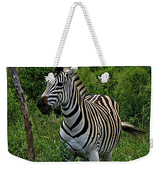 Beautiful Zebra Weekender Tote Bag