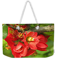 Beauty In The Branche Weekender Tote Bag
