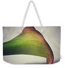 Weekender Tote Bag featuring the photograph Beauty by Karen Stahlros