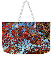 Weekender Tote Bag featuring the photograph Beauty Of Fall by Karol Livote