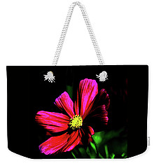 Weekender Tote Bag featuring the photograph Beauty  by Tom Prendergast