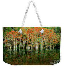 Beaver's Bend Cypress All In A Row Weekender Tote Bag by Tamyra Ayles