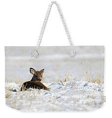 Bedded Fawn In Snowy Field Weekender Tote Bag