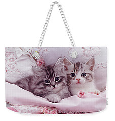 Bedtime Kitties Weekender Tote Bag