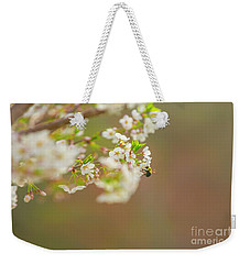 Bee On A Cherry Blossom Weekender Tote Bag