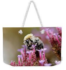 Weekender Tote Bag featuring the photograph Bee On A Verbena Bonariensis by Nick Biemans