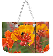 Weekender Tote Bag featuring the photograph Bee Pollinating Bird Of Paradise by James Fannin