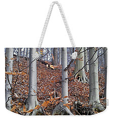 Weekender Tote Bag featuring the photograph Beech Trees by Melinda Blackman