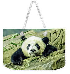 Bei Bei Panda At One Year Old Weekender Tote Bag