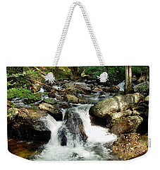 Weekender Tote Bag featuring the photograph Below Anna Ruby Falls by Jerry Battle