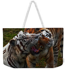 Weekender Tote Bag featuring the photograph Bengal Tiger And White Bengal Tiger by Chris Flees