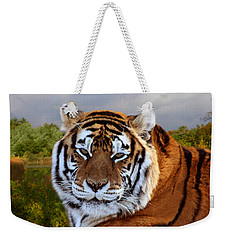 Bengal Tiger Portrait Weekender Tote Bag