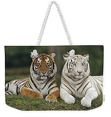 Weekender Tote Bag featuring the photograph Bengal Tiger Team by Konrad Wothe