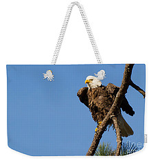Weekender Tote Bag featuring the photograph Berry Eagle by Geraldine DeBoer