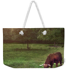 Weekender Tote Bag featuring the photograph Beside Still Waters by Mark Fuller
