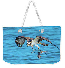 Best Osprey With Fish In One Talon Weekender Tote Bag by Jeff at JSJ Photography