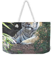 Weekender Tote Bag featuring the photograph Beyond The Branches by Laddie Halupa