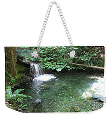 Weekender Tote Bag featuring the photograph Beyond The End Of The Trail At Limpy Creek by Marie Neder