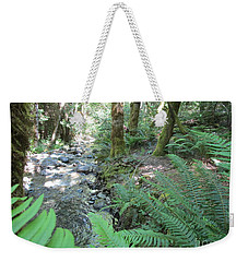 Weekender Tote Bag featuring the photograph Beyond The Ferns by Marie Neder