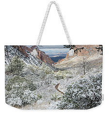 Big Bend Window With Snow Weekender Tote Bag
