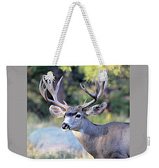 Weekender Tote Bag featuring the photograph Big Buck by Shane Bechler