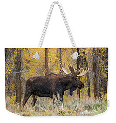 Weekender Tote Bag featuring the photograph Big Bull Washakie by Yeates Photography