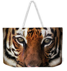 Big Cat Stare Down Weekender Tote Bag