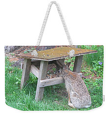 Big Eyed Rabbit Eating Birdseed Weekender Tote Bag by Betty Pieper