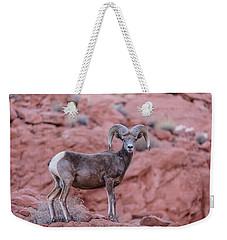 Big Horn Sheep Valley Of Fire Weekender Tote Bag