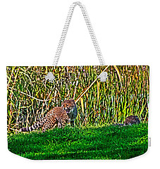 Big Yawn By Little Cub Weekender Tote Bag by Miroslava Jurcik